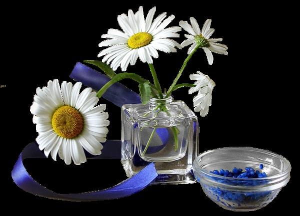 tubes vases de fleurs. Black Bedroom Furniture Sets. Home Design Ideas